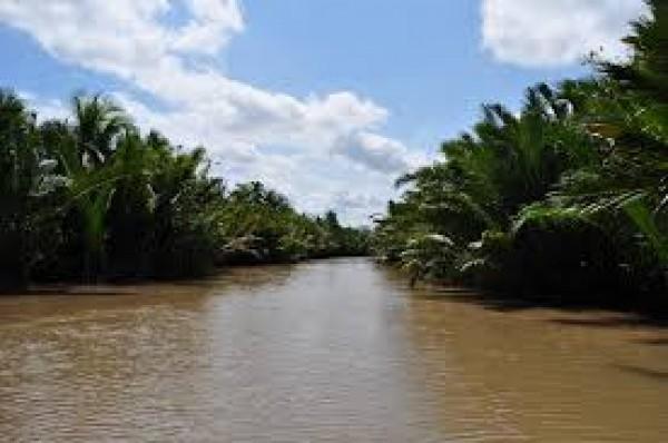 The magic of Mekong Delta Vietnam